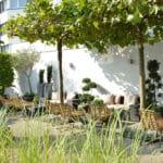 Terrasse hinten Sommer mit Wassergras
